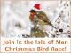 The Isle of Man Christmas Bird Race 2019 - the results