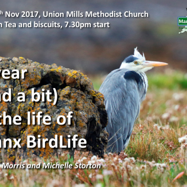 """Join us for """"A Year (and a bit) in the Life of Manx BirdLife"""""""