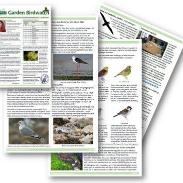 New Garden Birdwatch newsletter (Dec 2017)