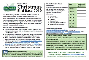 Isle of Man Christmas Bird Race 2019