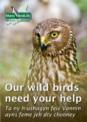 Become a Friend of Manx BirdLife