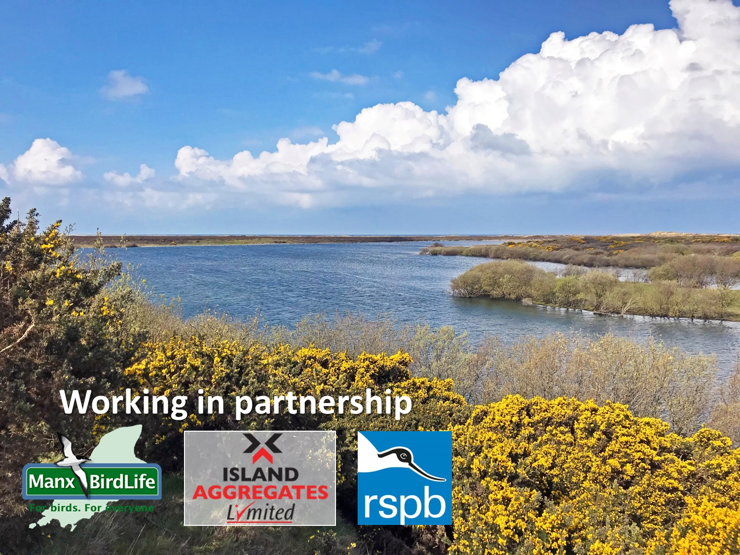 Manx BirdLife is working partnership with Island Aggregates and RSPB to create a very special place for birds and people.