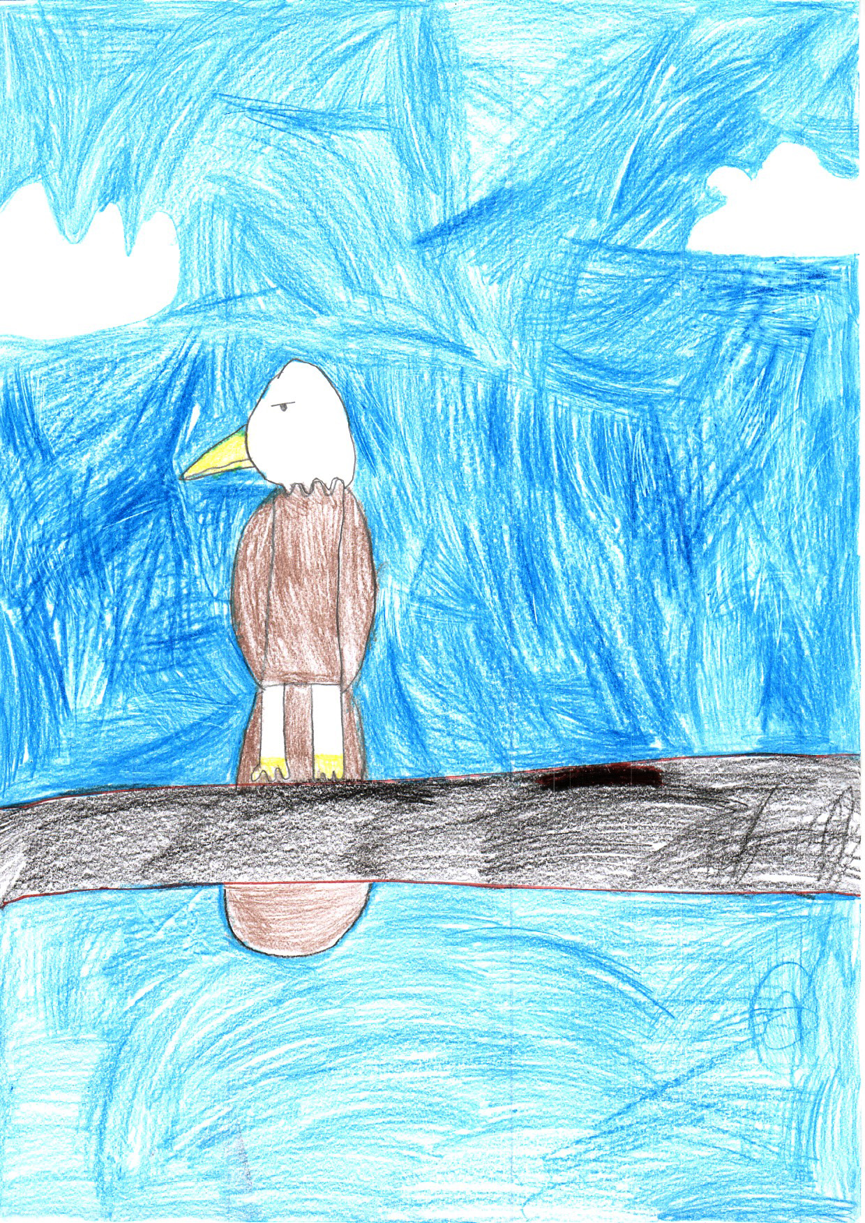"Above: ""My Favourite Bird"" by Billie (Yr 2, St Johns School)"