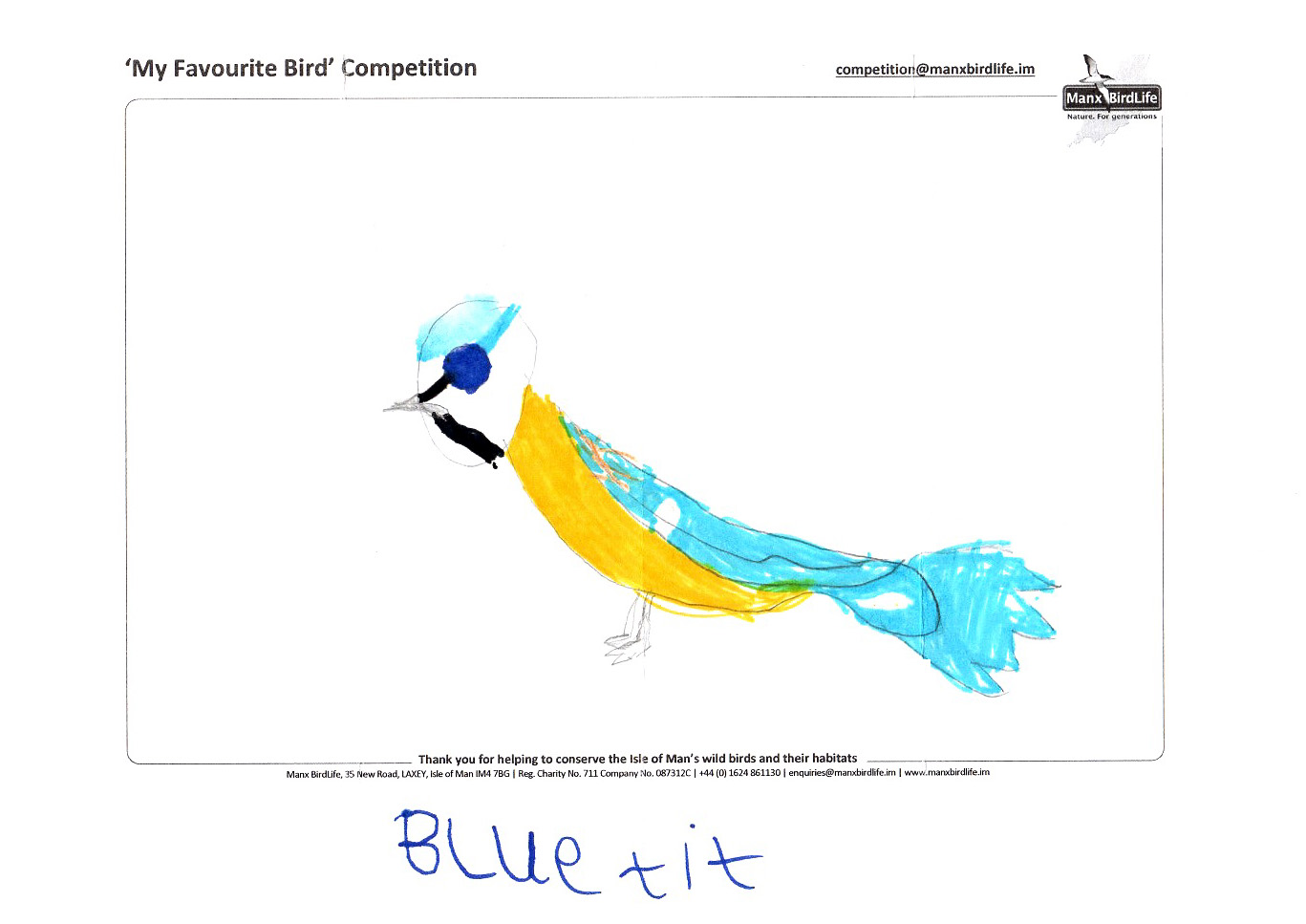 "Above: ""Blue Tit"" by David Leece (Yr 2, Ashley Hill School)"