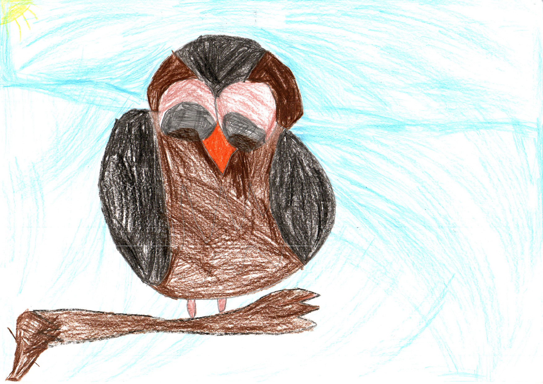 "Above: ""My Favourite Bird"" by Fearne (Yr 3, Marown School)"