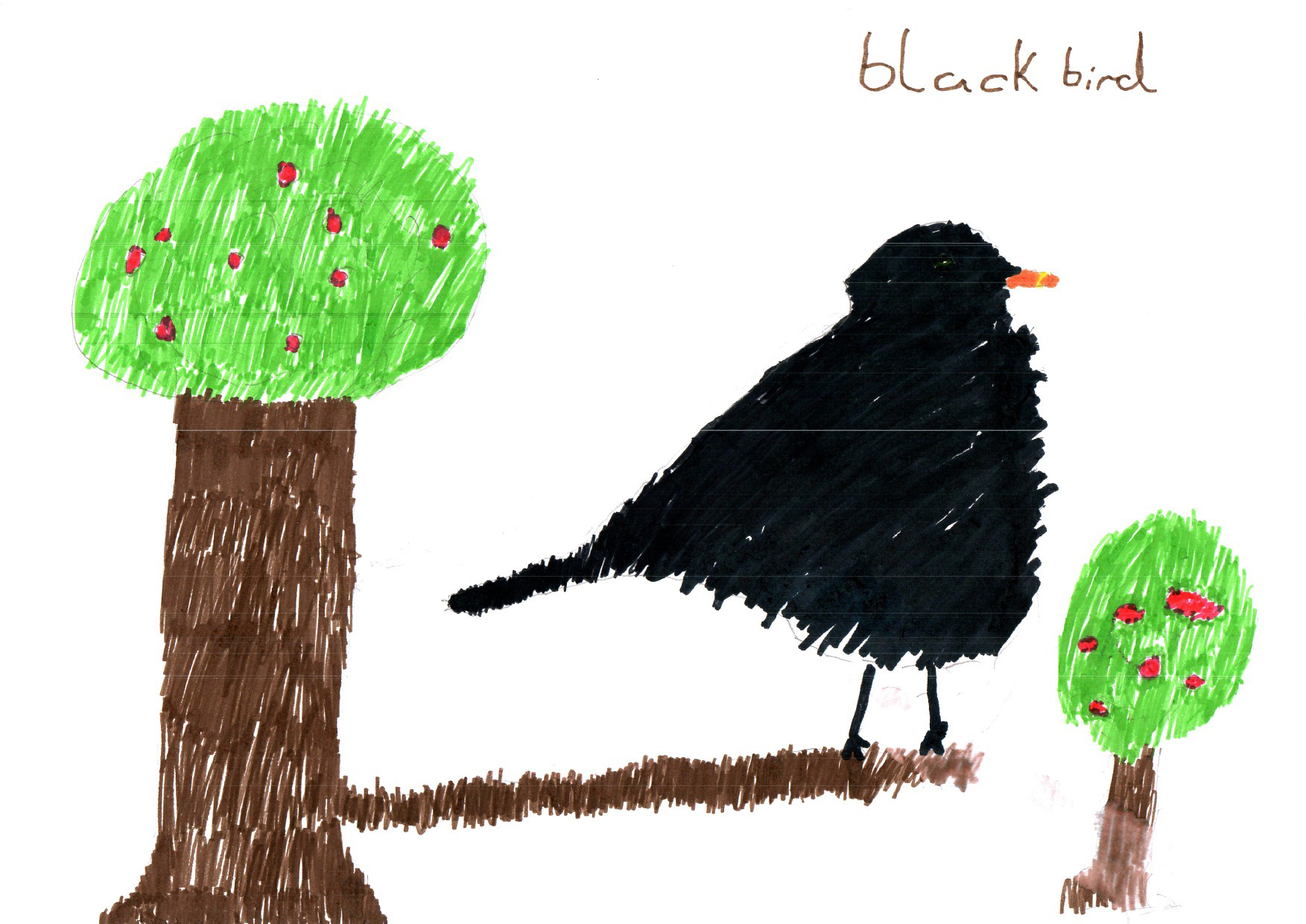 "Above: ""Blackbird"" by Tom Beech (Yr 3, Arbory School)"
