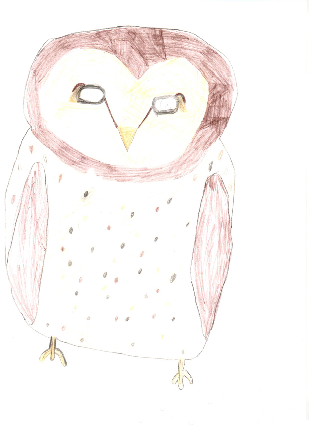 "Above: ""My Favourite Bird"" by Ruby Qualtrough (Yr 4, Marown School)"