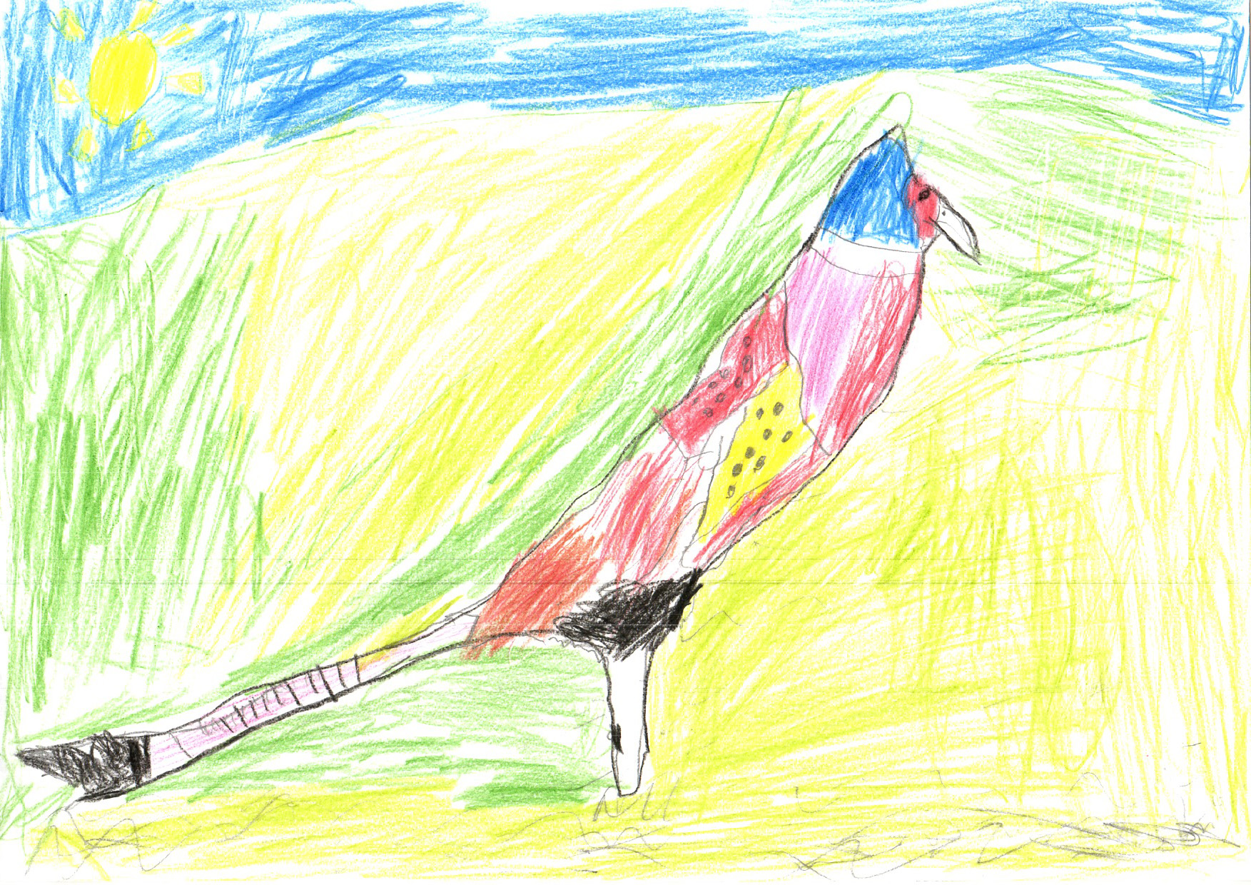 "Above: ""Pheasant"" by James Kennaugh (Yr 4, Arbory School)"
