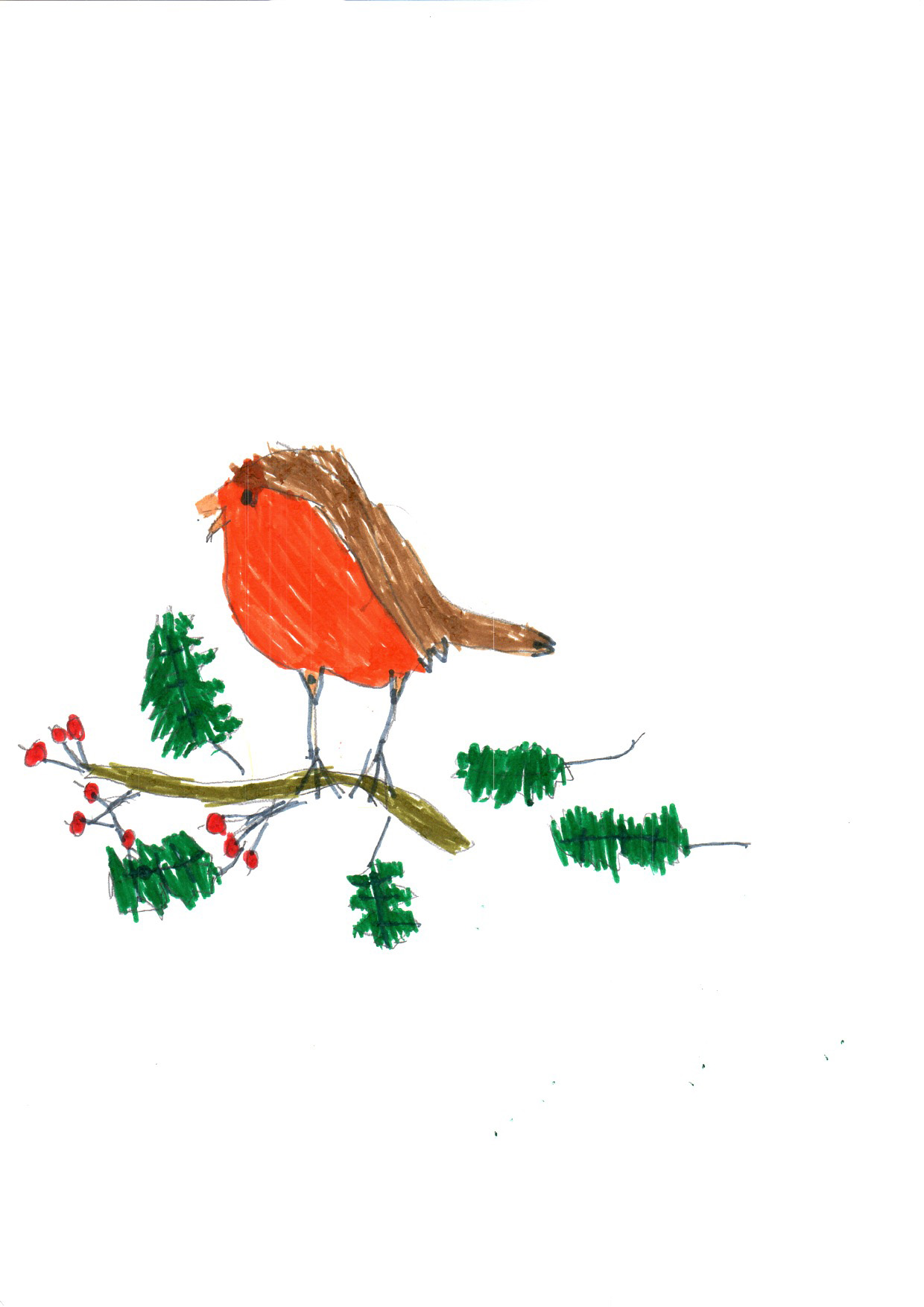 "Above: ""My Favourite Bird"" by Sebastian Lewis (Yr 4, Arbory School)"