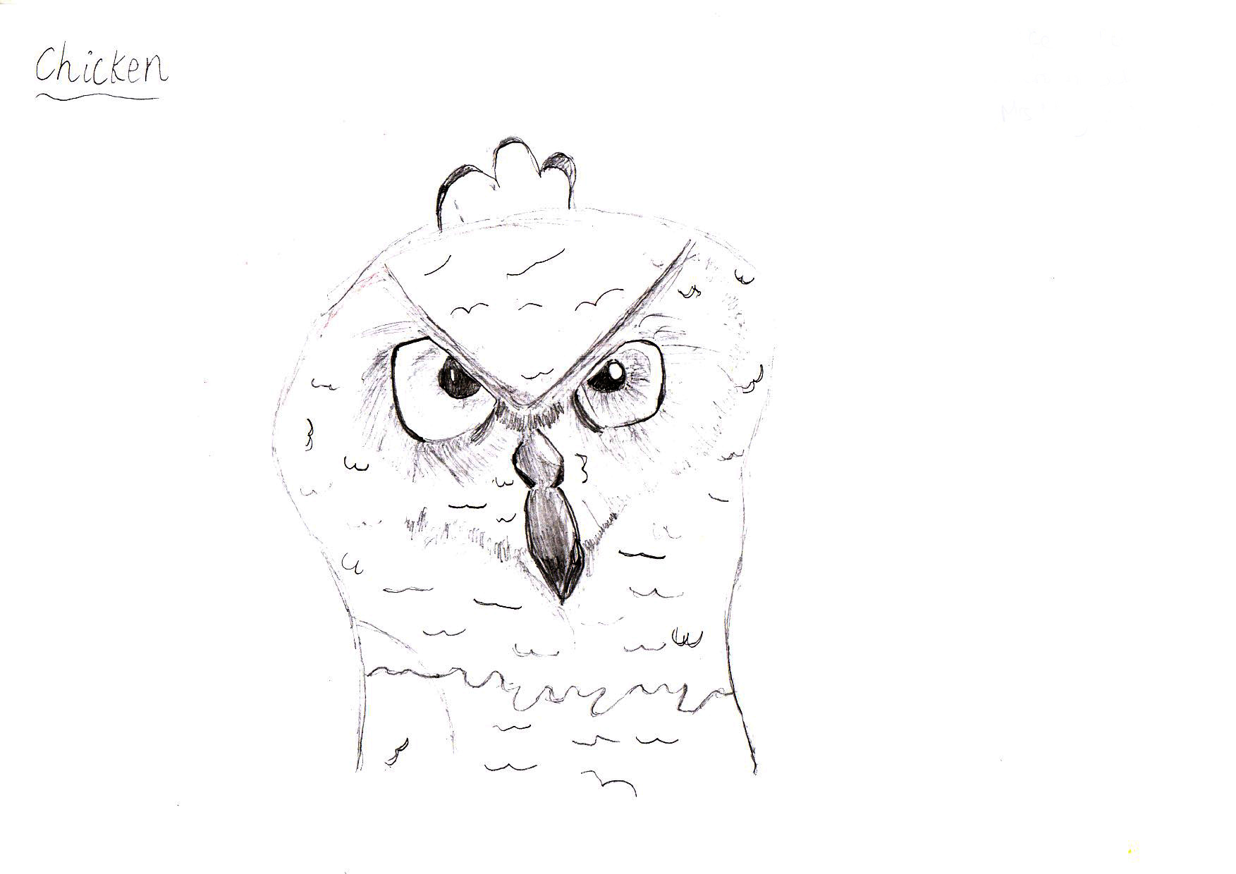 "Above: ""My favourite Bird"" by Aoife Hughes (Yr 5, Marown School)"