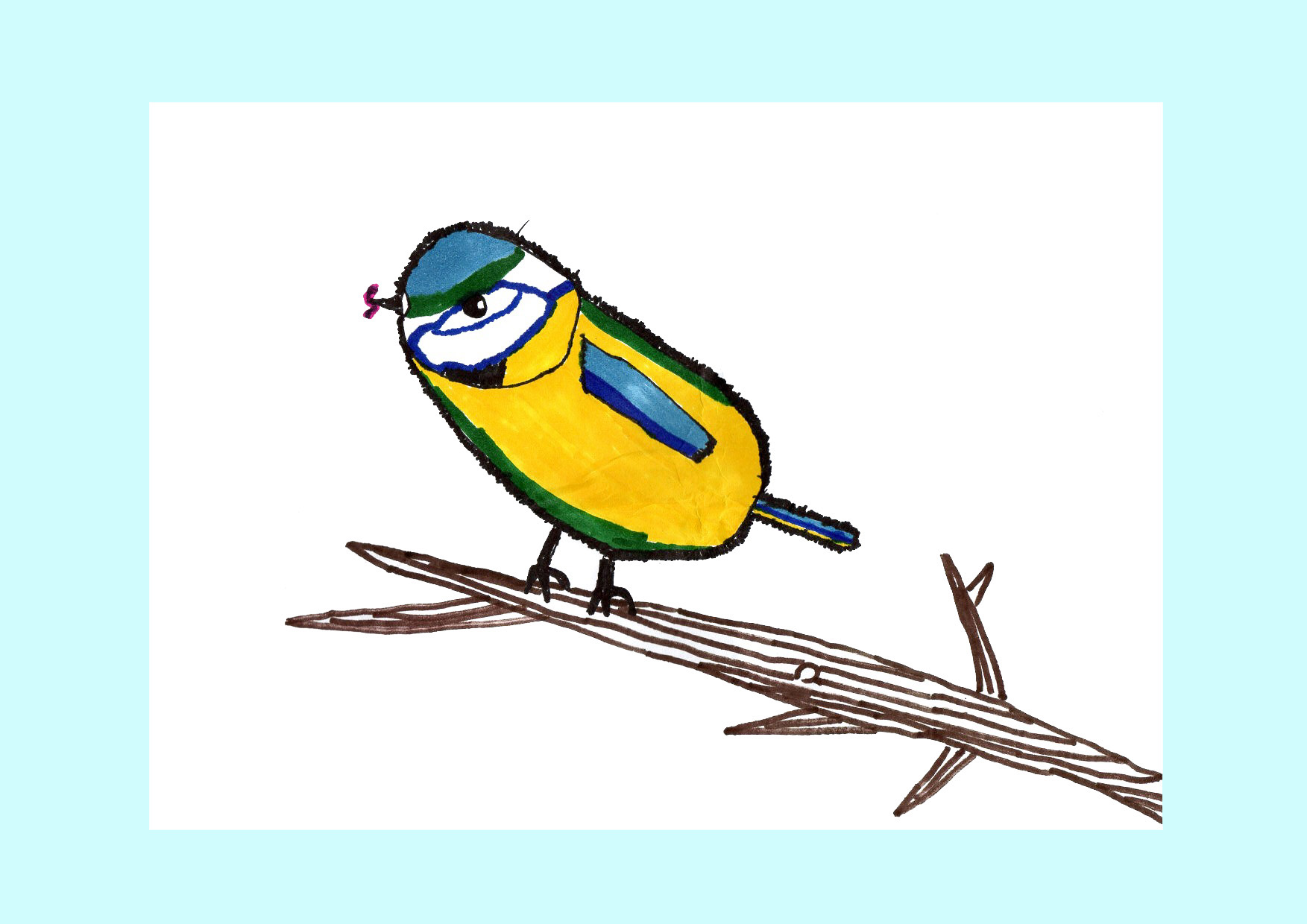 "Above: ""Hungry Blue Tit"" by Aydin Ozer (Yr 5, St Johns School)"