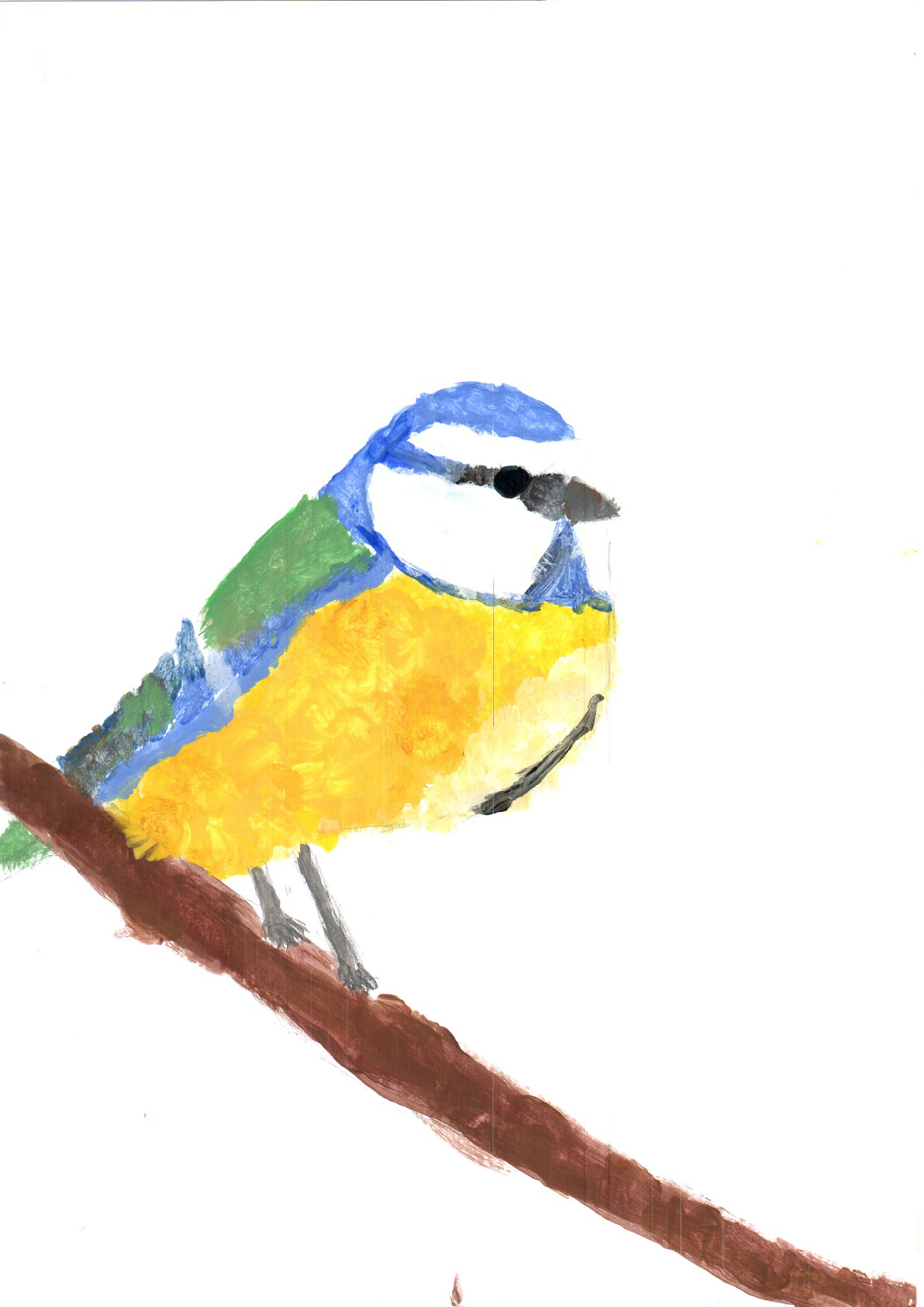 "Above: ""Blue Tit"" by Neve Kneen (Yr 5, Arbory School)"