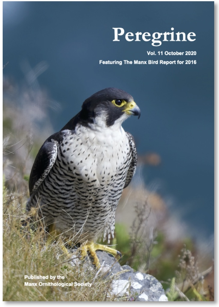 Peregrine Vol. 11 October 2020. Journal of the Manx Ornithological Society.